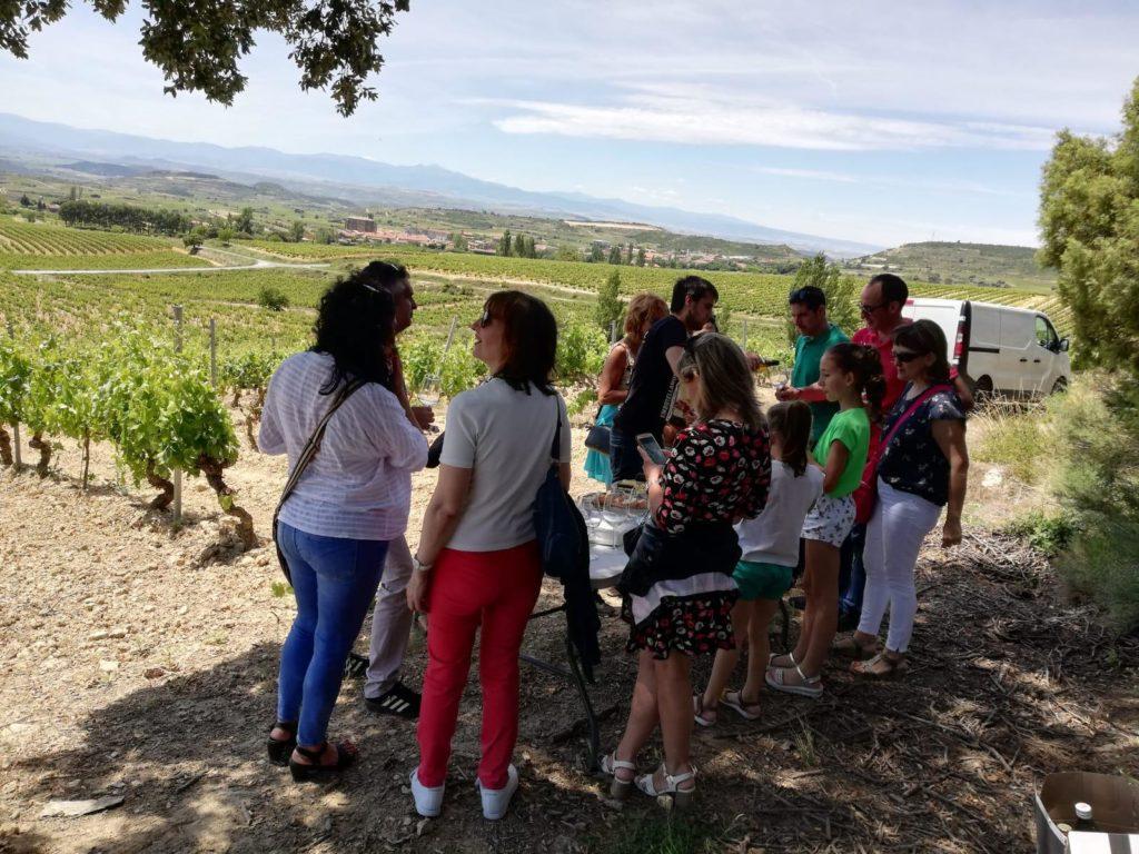 almuerzo en viñedo en rioja alavesa SAMANIEGO - BODEGAS ALÚTIZ